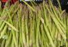 Выращенный урожай спаржи