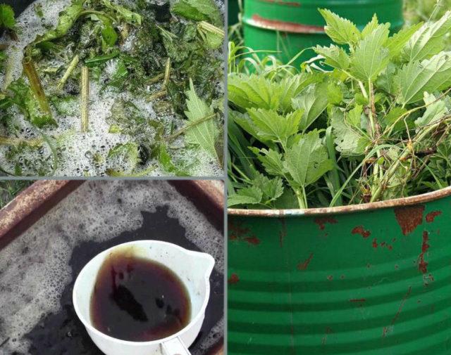 Удобрение из травы, крапивы