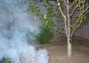 Дым против заморозков