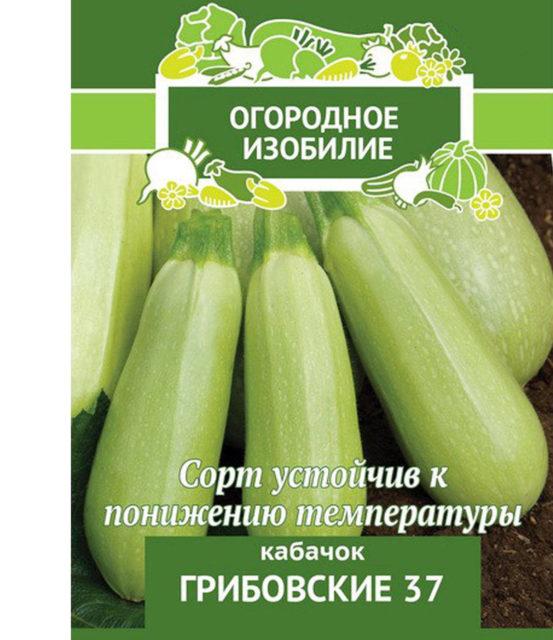 Сорт кабачков Грибовский-37