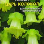 Кобея Царь-Колокол