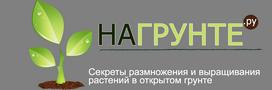 На Грунте.ру