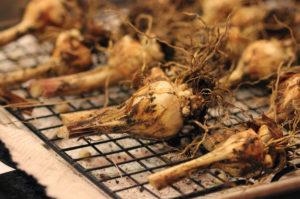 Хранение луковиц зимой