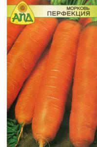 Поздние по созреванию сорта моркови