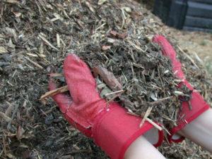 Удобрение и мульчирование листьями