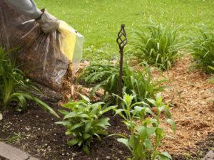 Органическое удобрение и мульча - опилки