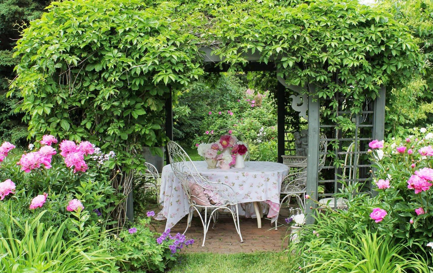 Утро в саду фото росы что