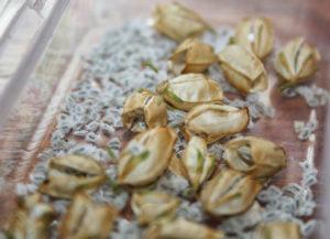 Собранные семена немезии