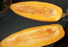 Рейтинг сорта тыквы Сладкий банан